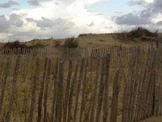De duinen bij Katwijk