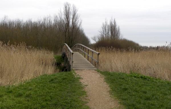 Park near Delft
