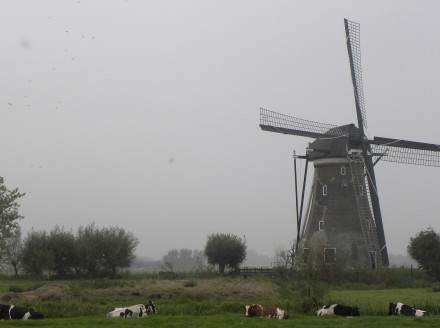 WIndmill near Haastrecht