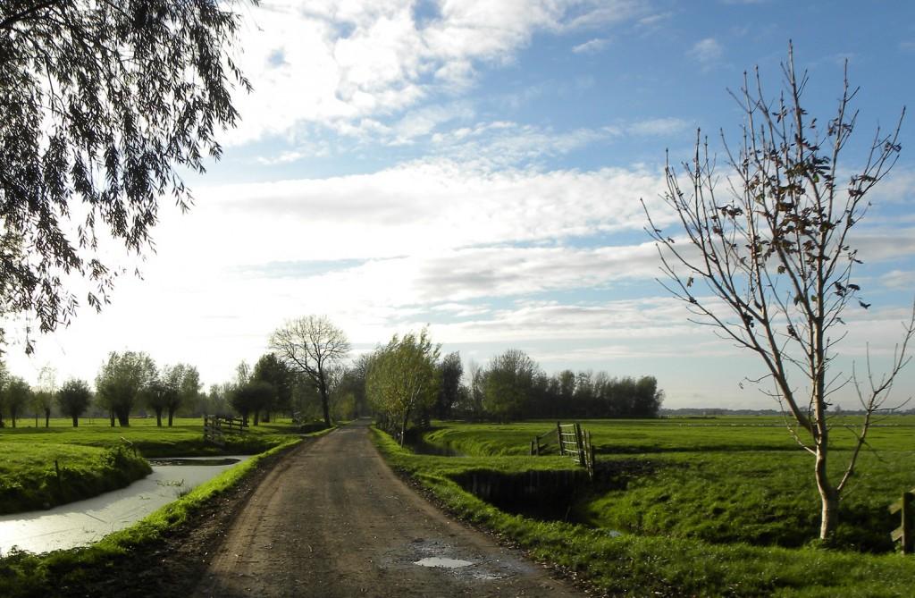 Landweg op weg naar Schoonhoven