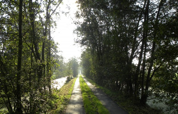On the way to Schoonhoven