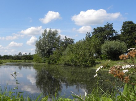 Pond near Lekkerkerk