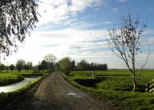 Ländliche Straße in Schoonhoven