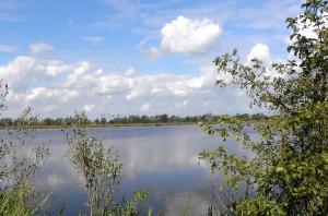 Nature near Schoonhoven