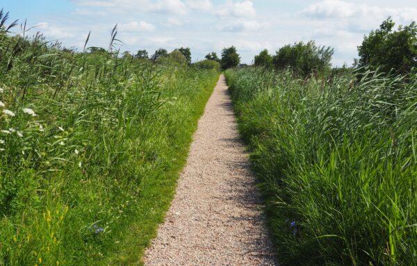 nice gravel path