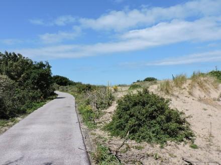 Dunes of Scheveningen