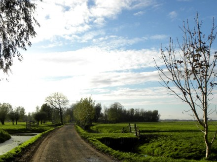 Country road near Schoonhoven