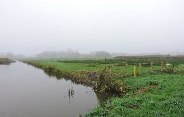 The Polder
