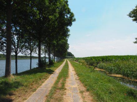 wandelpad langs het Amsterdam-Rijn kanaal tussen Culemborg en Wijk bij Duurstede