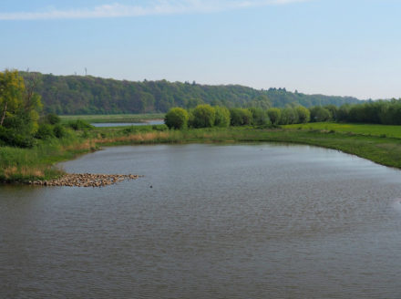 The river the Nederrijn by the Wageningse Mountain