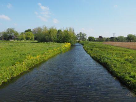een sloot in het voorjaar tussen Rotterdam en Delft